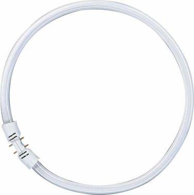 Circl FC 40W/830 2GX13 TL FS1